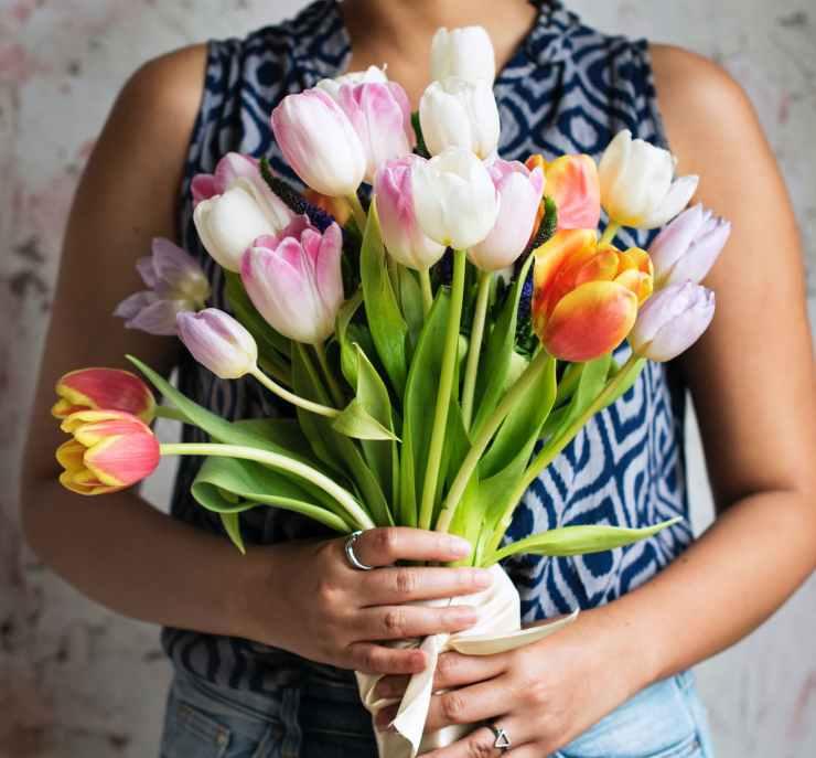 arrangement beautiful blooming blossom